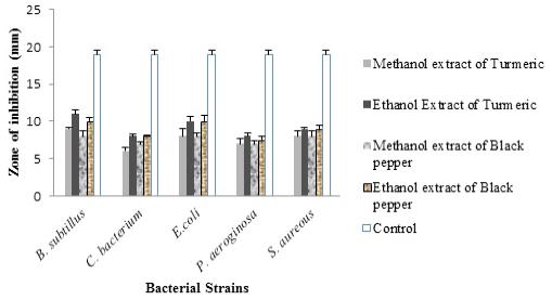 Antimicrobial and Anti-Prostate Cancer Activity of Turmeric (Curcuma